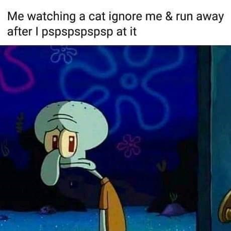 Cartoon - Me watching a cat ignore me & run away after I pspspspspsp at it