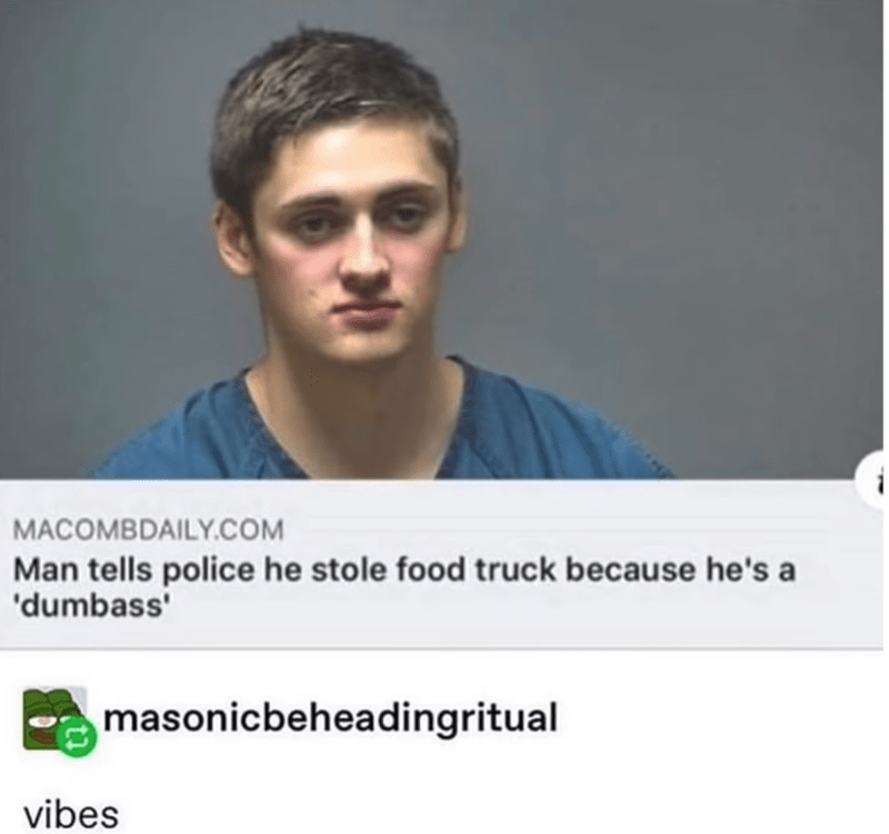 Text - MACOMBDAILY.COM Man tells police he stole food truck because he's a 'dumbass masonicbeheadingritual vibes