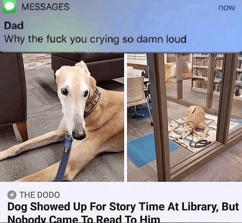 Product - MESSAGES now Dad Why the fuck you crying so damn loud THE DODO Dog Showed Up For Story Time At Library, But Nobody Came To Read To Him