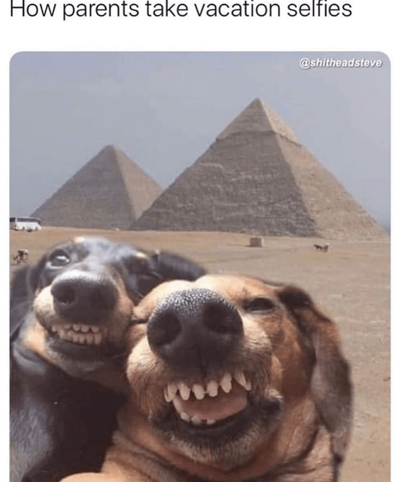 Pyramid - How parents take vacation selfies @shitheadsteve