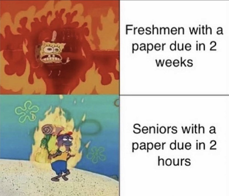 Cartoon - Freshmen with a paper due in 2 weeks Seniors with paper due in 2 hours