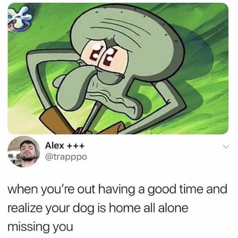 Cartoon - Alex + @trapppo when you're out having a good time and realize your dog is home all alone missing you