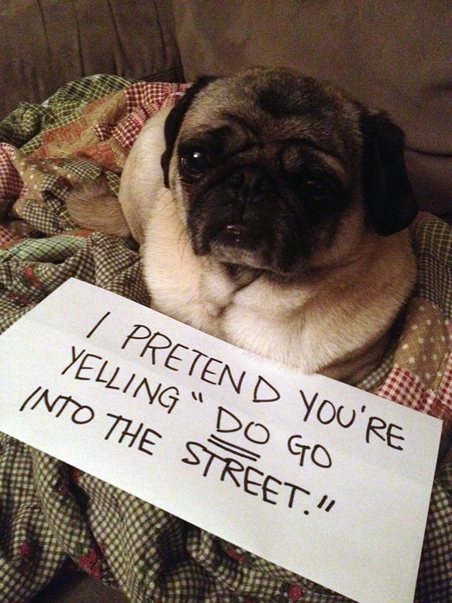 Pug - / PRETEN D You'RE YELLING DO GrO INTO THE STREET.""