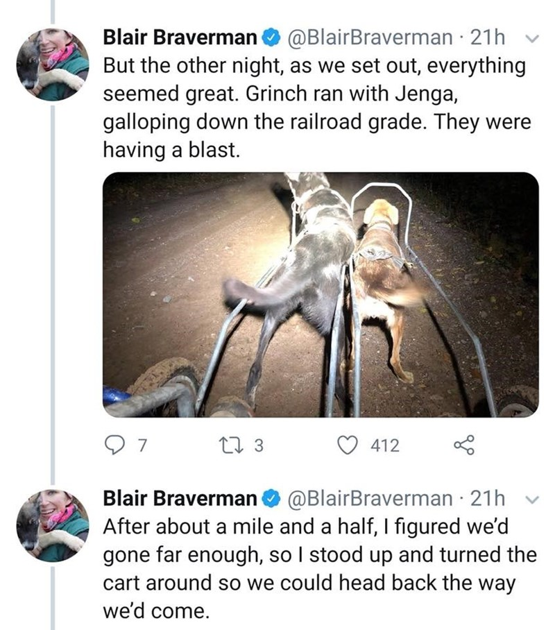Joint - Blair Braverman@BlairBraverman 21h But the other night, as we set out, everything seemed great. Grinch ran with Jenga, galloping down the railroad grade. They were having a blast. 7 t 3 412 Blair Braverman @BlairBraverman 21h After about a mile and a half, I figured we'd gone far enough, so I stood up and turned the cart around so we could head back the way we'd come.