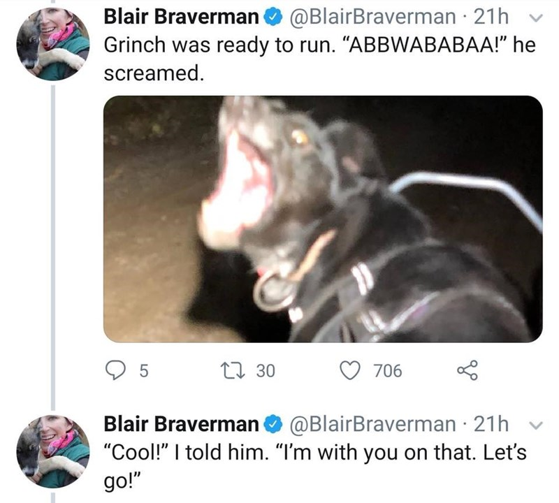 """Snout - @BlairBraverman 21h Blair Braverman Grinch was ready to run. """"ABBWABABAA!"""" he screamed 5 L30 706 Blair Braverman@BlairBraverman 21h """"Cool!"""" I told him. """"I'm with you on that. Let's go!"""""""