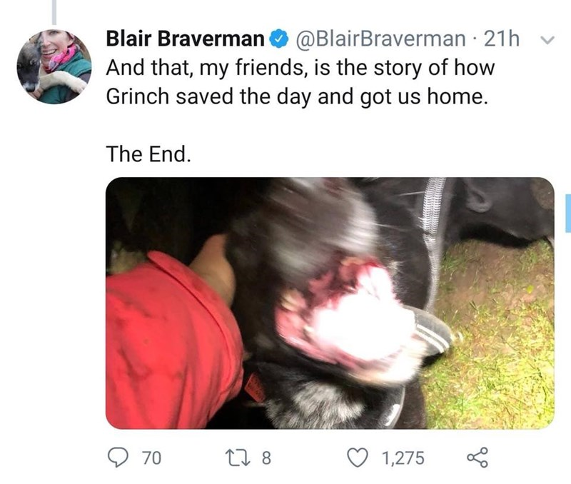Canidae - Blair Braverman@BlairBraverman 21h And that, my friends, is the story of how Grinch saved the day and got us home. The End. 70 L 8 1,275