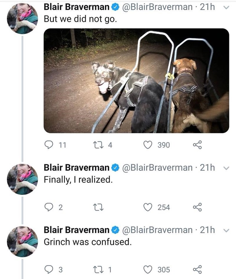 Screenshot - Blair Braverman But we did not go @BlairBraverman 21h t 4 11 390 Blair Braverman Finally, I realized @BlairBraverman 21h 254 Blair Braverman @BlairBraverman 21h Grinch was confused. 3 305
