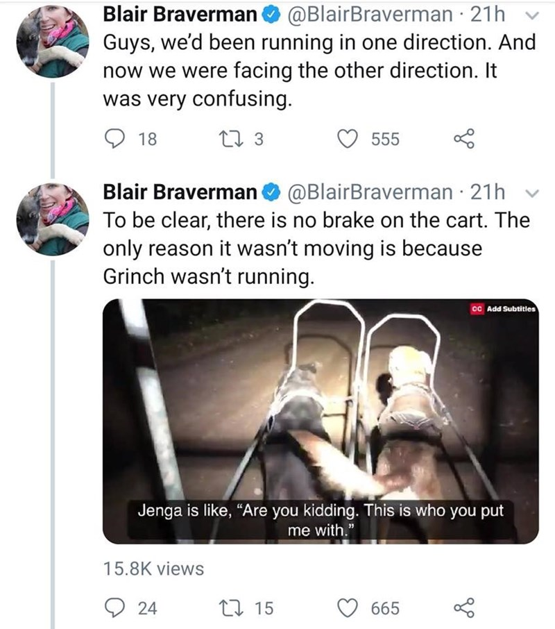 """Text - Blair Braverman@BlairBraverman 21h Guys, we'd been running in one direction. And now we were facing the other direction. It was very confusing 23 555 18 Blair Braverman @BlairBraverman 21h To be clear, there is no brake on the cart. The only reason it wasn't moving is because Grinch wasn't running. CC Add Subtitles Jenga is like, """"Are you kidding. This is who you put me with."""" 15.8K views L15 24 665"""