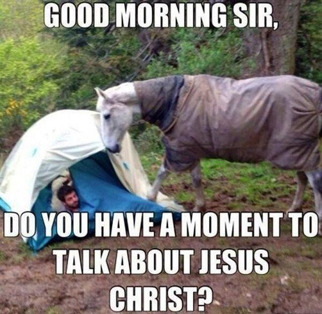 Horse - GOOD MORNING SIR, DO YOU HAVE A MOMENT TO TALK ABOUT JESUS CHRIST?