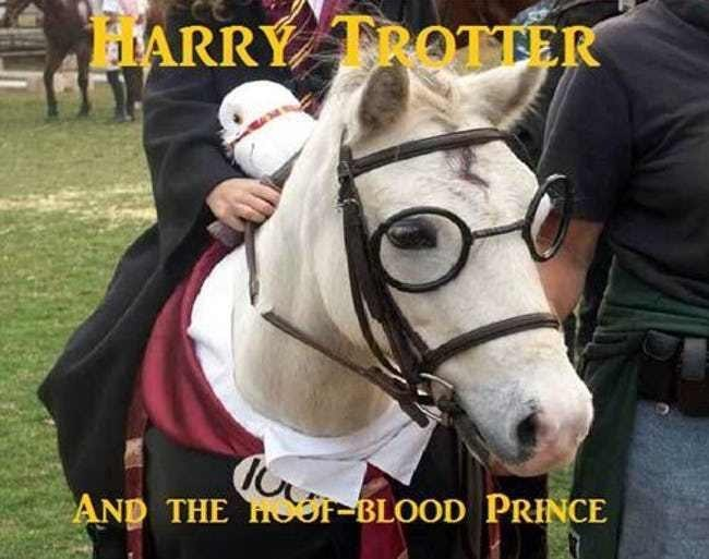 Horse - IARRY TROTTER AND THE Or-BLOOD PRINCE