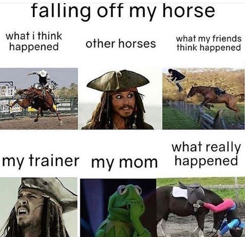 Horse - falling off my horse what i think happened what my friends think happened other horses what really happened my trainer my mom