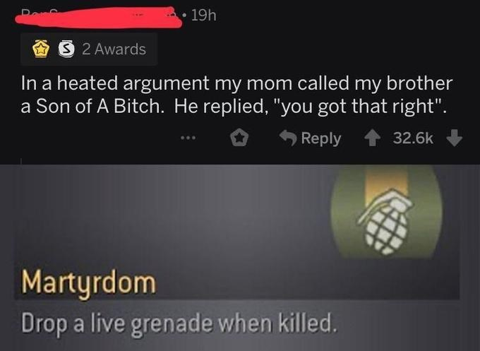 "Text - 19h S 2 Awards In a heated argument my mom called my brother a Son of A Bitch. He replied, ""you got that right"". Reply 32.6k Martyrdom Drop a live grenade when killed."