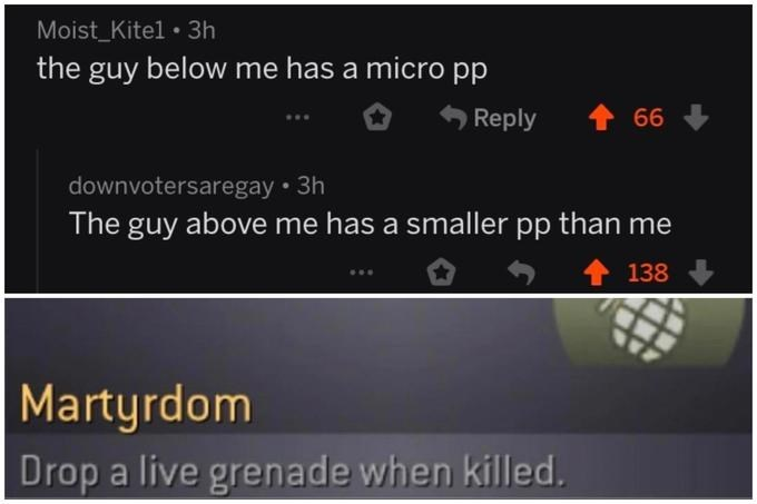 Text - Moist_Kitel 3h the guy below me has a micro pp Reply 66 downvotersaregay 3h The guy above me has a smaller pp than me 138 Martyrdom Drop a live grenade when killed.