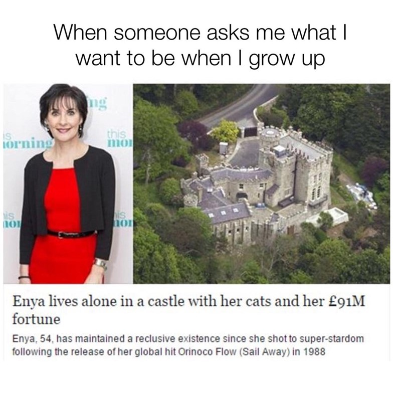 Text - When someone asks me what I want to be when I grow up ng this mmo orning is is Enya lives alone in a castle with her cats and her £91M fortune Enya, 54, has maintained a reclusive existence since she shot to super-stardom following the release of her global hit Orinoco Flow (Sail Away) in 1988