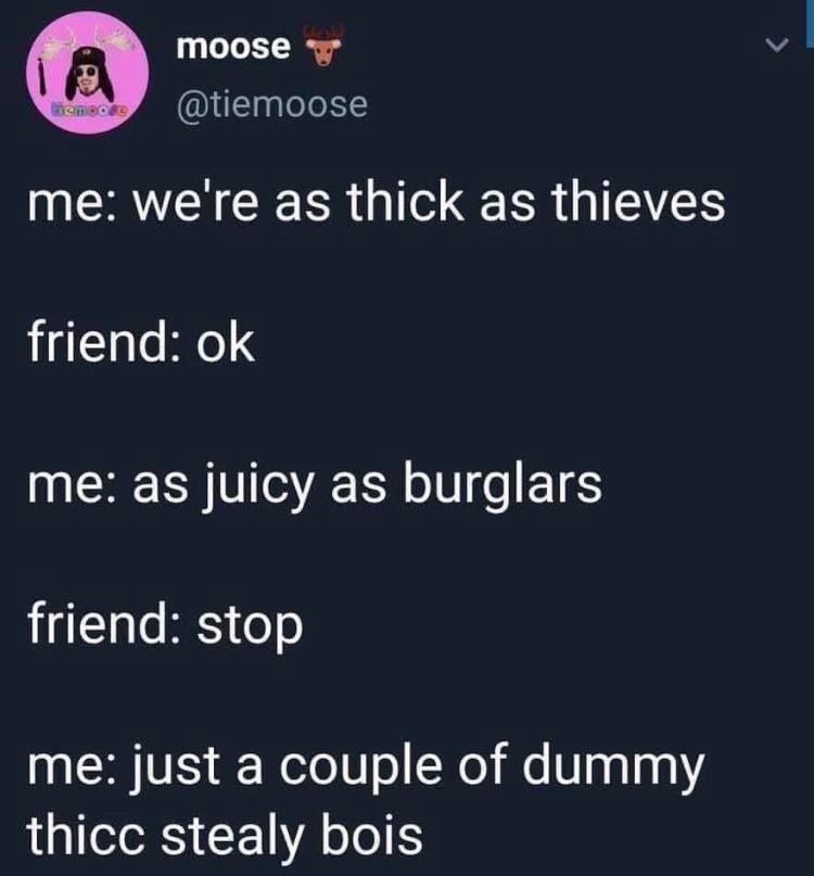 Text - moose @tiemoose ACmeore me: we're as thick as thieves friend: ok me: as juicy as burglars friend: stop me: just a couple of dummy thicc stealy bois