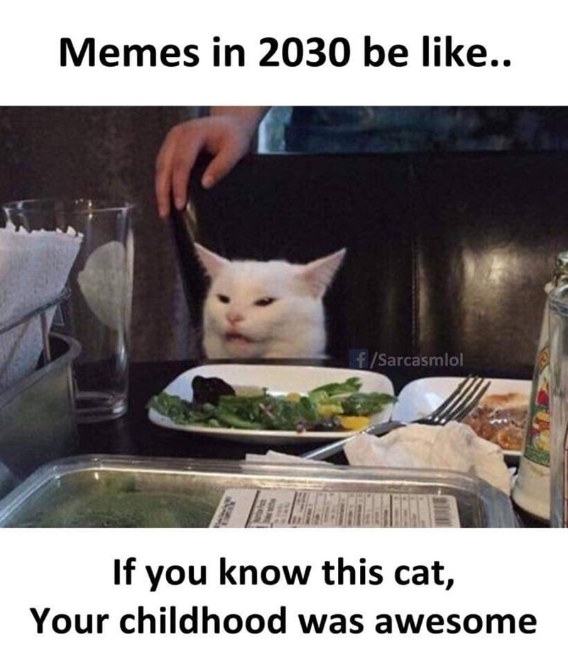 Cat - Memes in 2030 be like.. f/Sarcasmlol If you know this cat, Your childhood was awesome