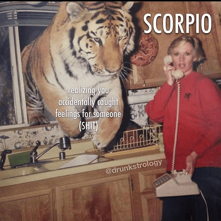 Bengal tiger - SCORPIO realizing you accidentally caught feelings for someone (SHIT) ereldr's @drunkstrology