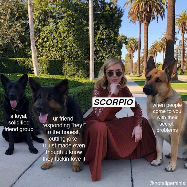 "Dog - SCORPIO when people come to you with their a loyal, solidified ur friend responding ""hey!"" to the honest, cutting joke u just made even though u know they fuckin love it secret friend group problems @notallgeminis"