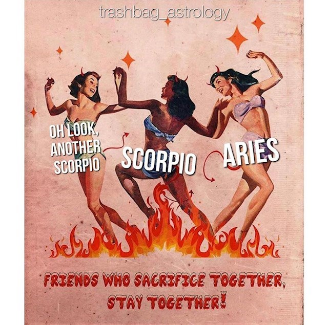 Poster - trashbag astrology OH LOOK ANOTHER SCORPIO SCORPIO ARIES FRIENDS WHO SACRZFECE TOGETHER, STAY TOGETNER!