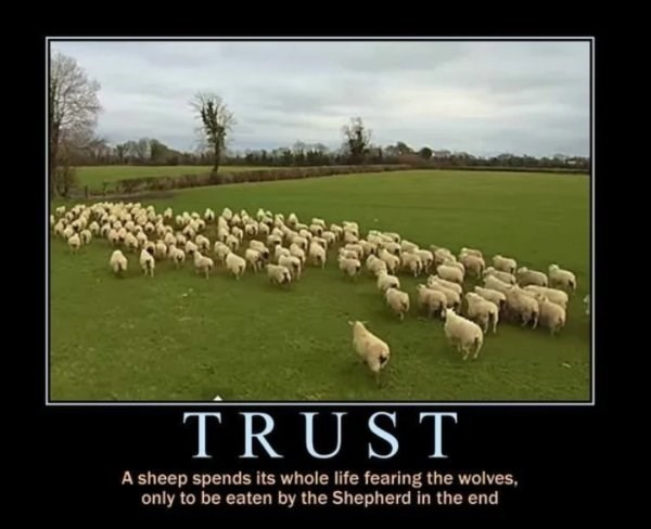 Sheep - TRUST A sheep spends its whole life fearing the wolves, only to be eaten by the Shepherd in the end