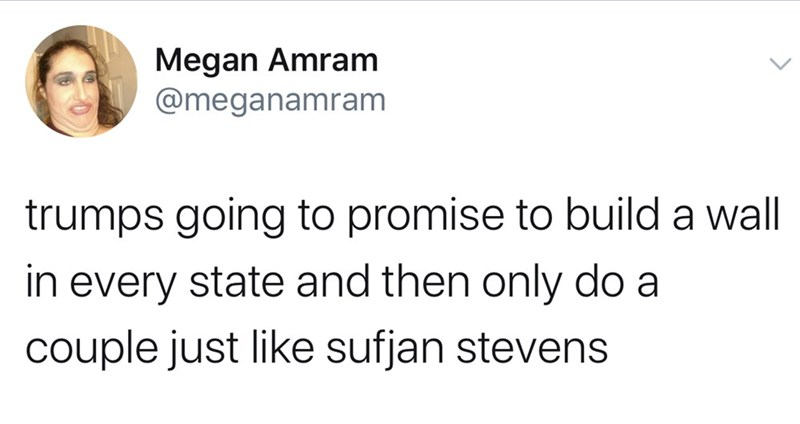 Text - Megan Amram @meganamram trumps going to promise to build a wall every state and then only do a couple just like sufjan stevens in