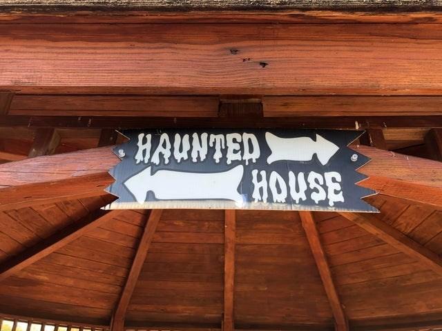 Wood - HAUNTED ORE