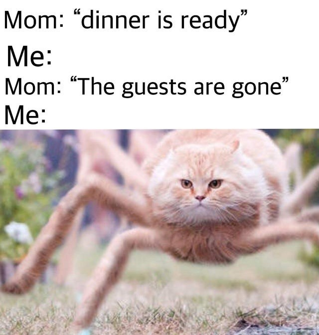 """Organism - Mom: """"dinner is ready"""" Мe: Mom: """"The guests are gone"""" Мe:"""