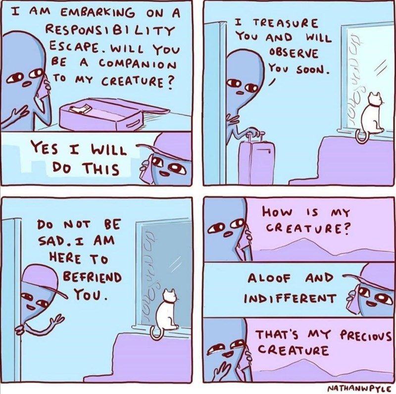 Text - I AM EMBARKING ON A RESPONSIBI LITY ESCAPE. WIL L You BE A COMPANION I TREASURE You AND WILL 0BSERVE Yov SooN To MY CREATURE? YES I WILL Do THIS How is mY CREATURE? Do NOT BE SAD. I AM HERE TO ALOOF AND BEFRIEND You. INDIFFERENT THAT'S MY PRECIOUS CREATURE NATHANWPYLE