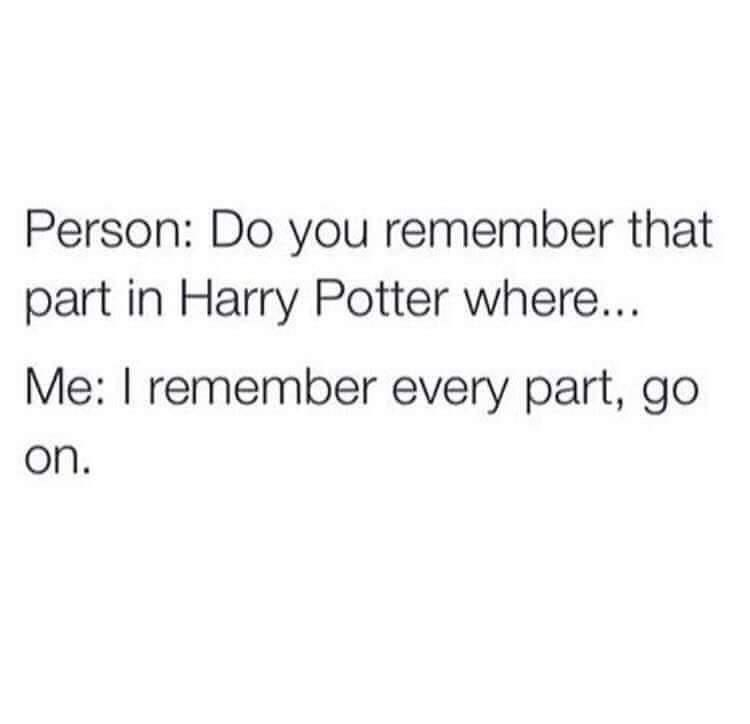 Text - Person: Do you remember that part in Harry Potter where... Me: I remember every part, go on.