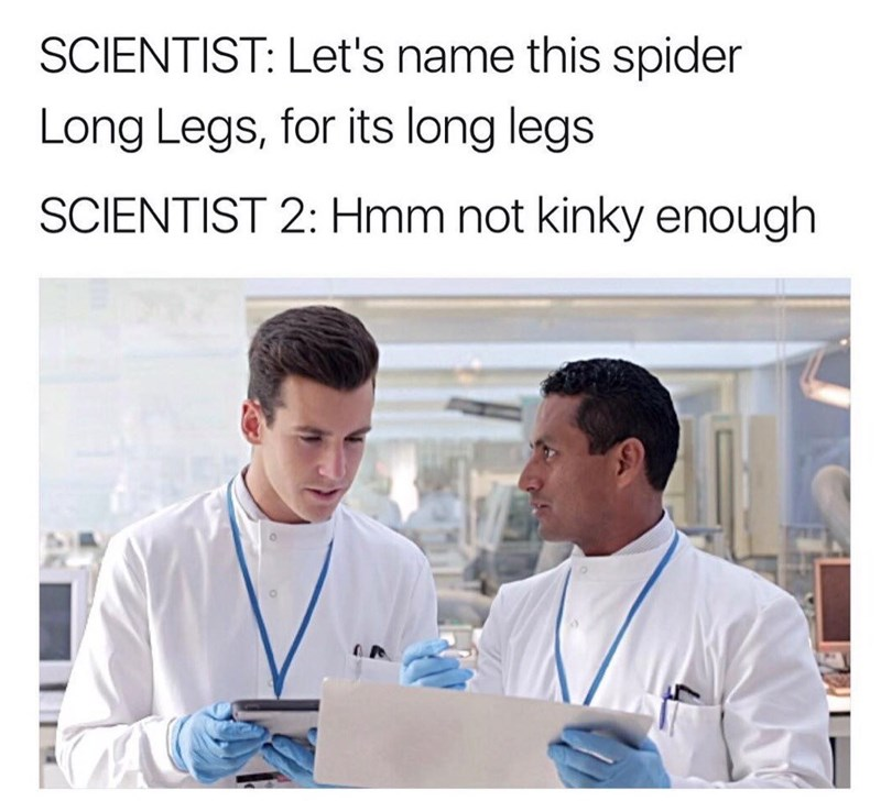 Medical procedure - SCIENTIST: Let's name this spider Long Legs, for its long legs SCIENTIST 2: Hmm not kinky enough