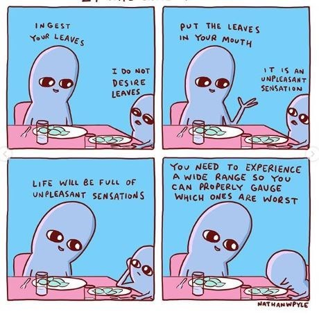 Text - INGEST pUT THE LEAVES IN YOUR MOUTH YouR LEAVES T IS AN UNPLEASANT I Do NOT DESIRE SENSATION LEAVES You NEED TO EXPERIENCE A WIDE RANGE So You CAN PROPERLY GAUGE WHICH ONES ARE WORST LIFE WILL BE FULL OF UNPLEASANT SENSATIONS NATHANWPYLE