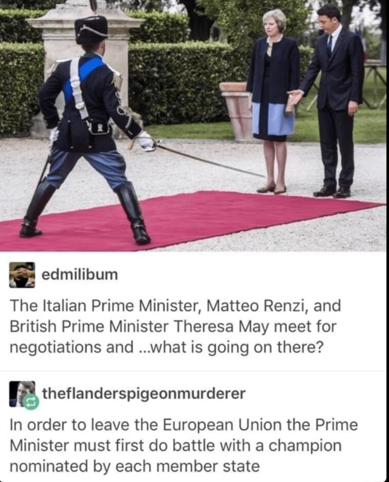 Photo caption - edmilibum The Italian Prime Minister, Matteo Renzi, and British Prime Minister Theresa May meet for negotiations and ...what is going on there? theflanderspigeonmurderer In order to leave the European Union the Prime Minister must first do battle with a champion nominated by each member state