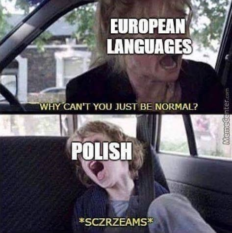 Vehicle door - EUROPEAN LANGUAGES WHY CAN'T YOU JUST BE NORMAL? POLISH *SCZRZEAMS Memecenter.com