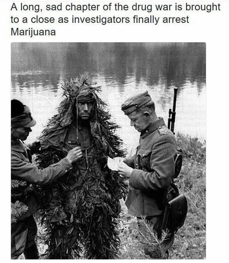 Photography - A long, sad chapter of the drug war is brought to a close as investigators finally arrest Marijuana