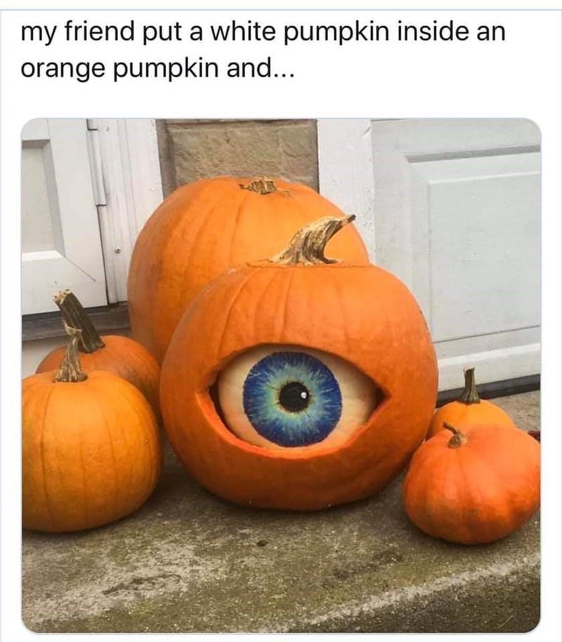 Pumpkin - my friend put a white pumpkin inside an orange pumpkin and...