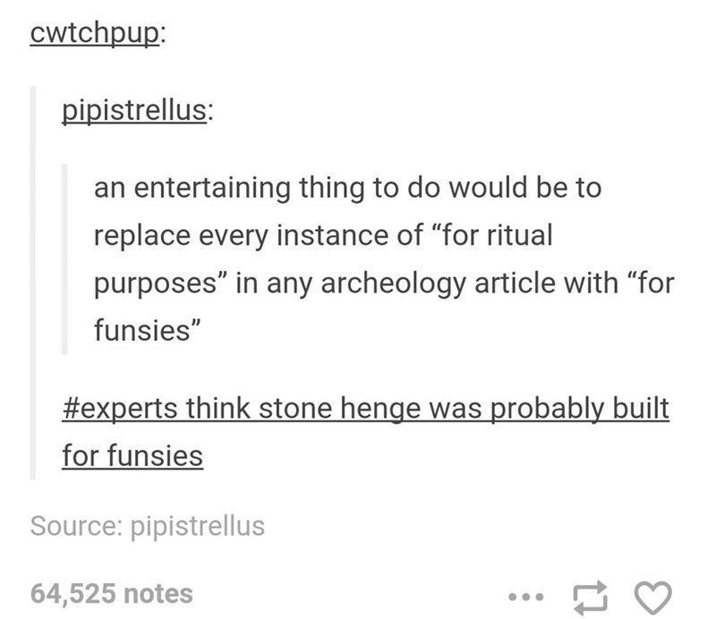 """Text - cwtchpup: pipistrellus: an entertaining thing to do would be to replace every instance of """"for ritual purposes"""" in any archeology article with """"for funsies"""" #experts think stone henge was probably built for funsies Source: pipistrellus 64,525 notes"""