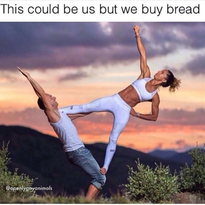 Physical fitness - This could be us but we buy bread @openlygayanimals