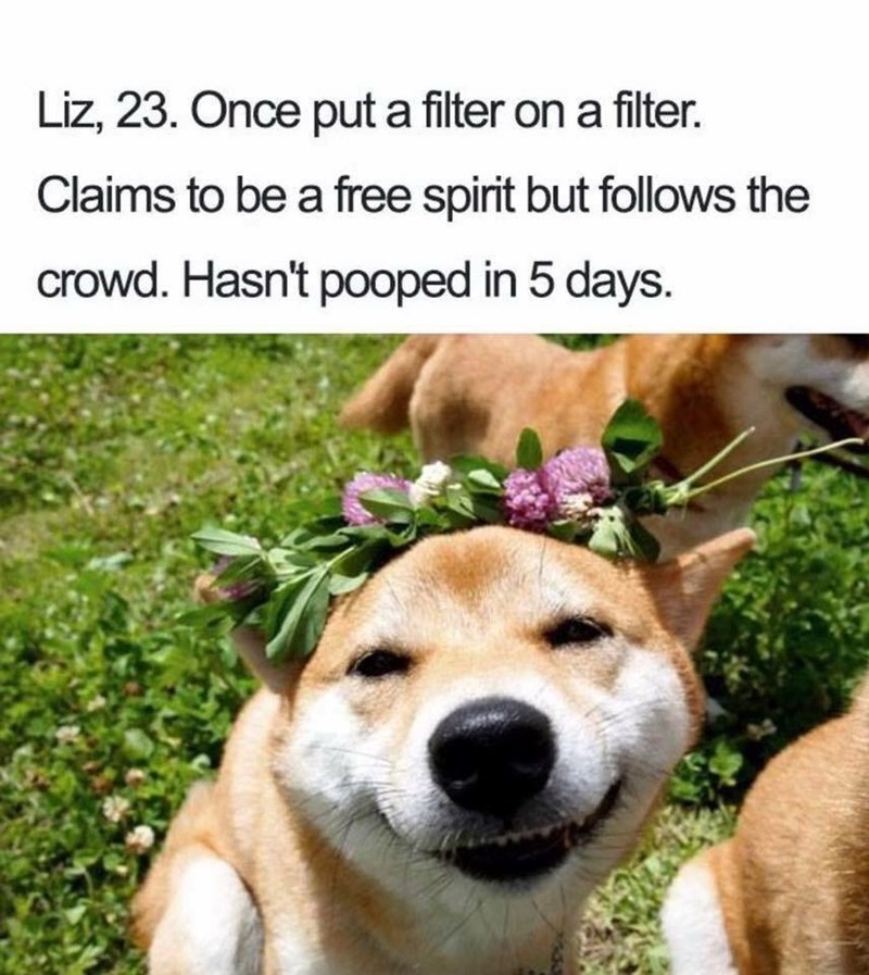 Dog - Liz, 23. Once put a filter on a filter. Claims to be a free spirit but follows the crowd. Hasn't pooped in 5 days.