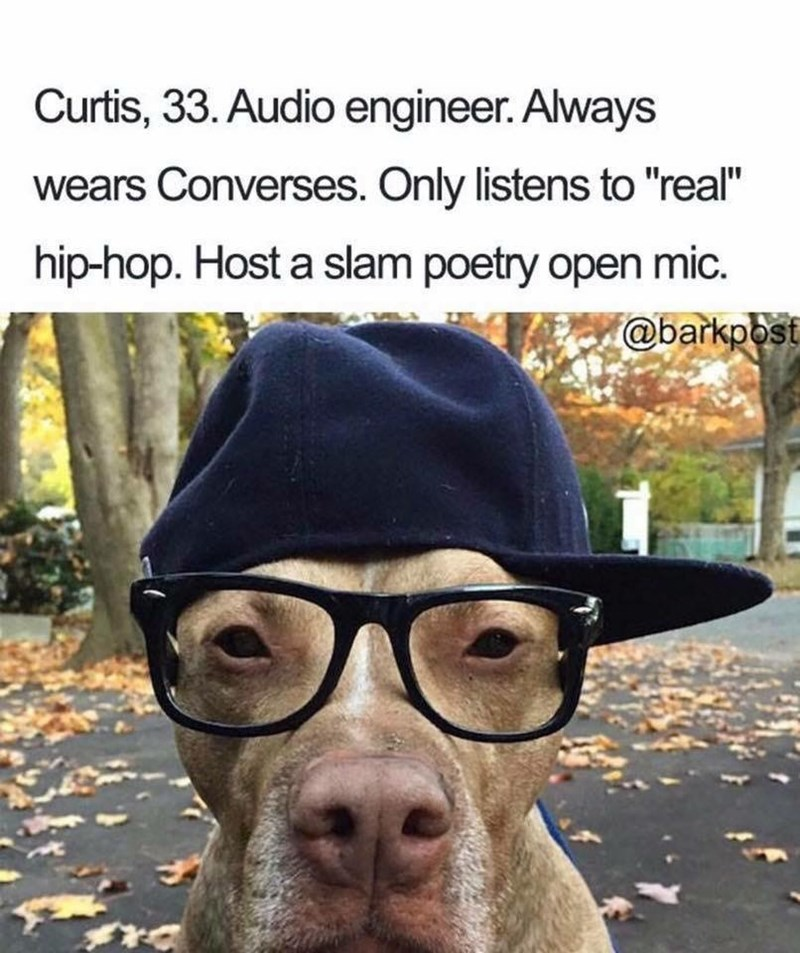 "Dog - Curtis, 33. Audio engineer. Always wears Converses. Only listens to ""real"" hip-hop. Host a slam poetry open mic. @barkpbst"