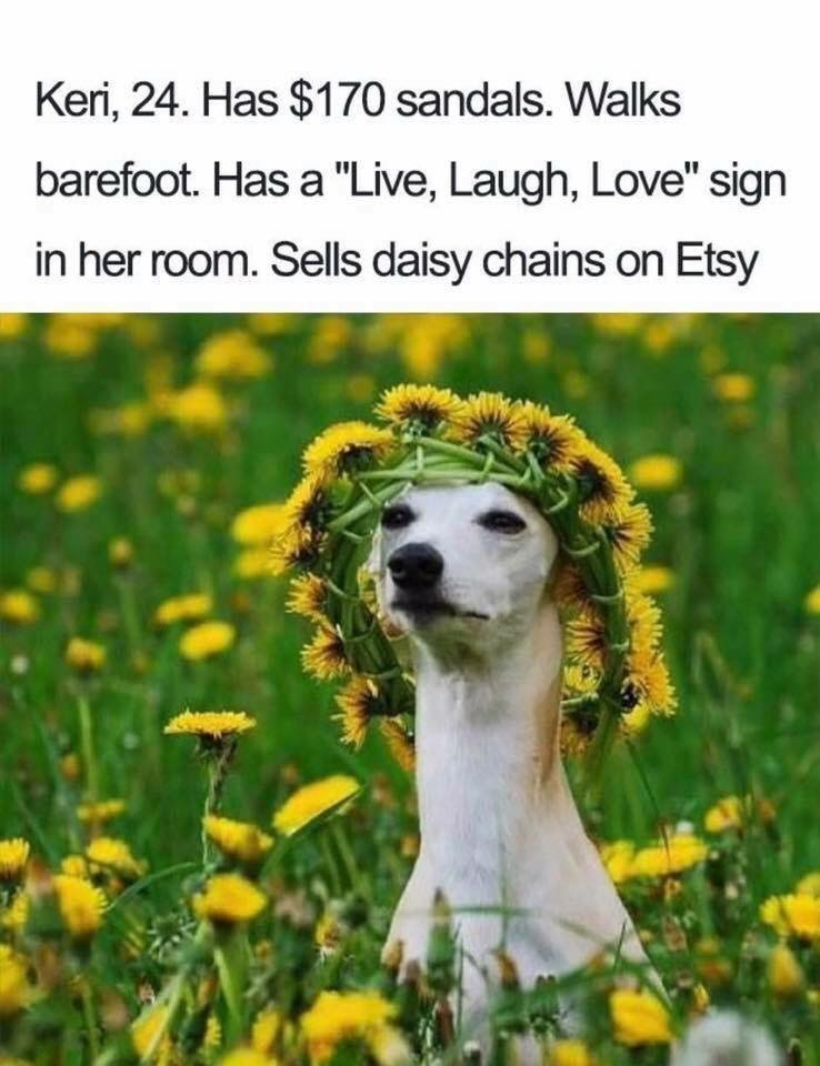 "Vertebrate - Keri, 24. Has $170 sandals. Walks barefoot. Has a ""Live, Laugh, Love"" sign in her room. Sells daisy chains on Etsy"