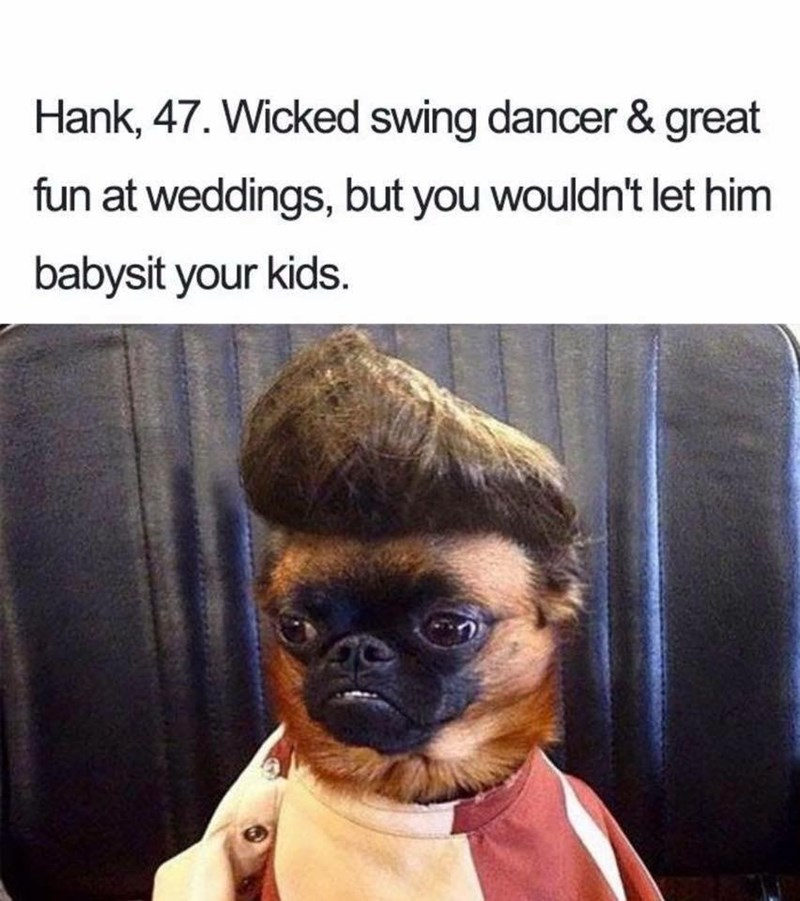Pug - Hank, 47. Wicked swing dancer & great fun at weddings, but you wouldn't let him babysit your kids.