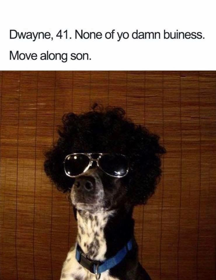 Dog - Dwayne, 41. None of yo damn buiness. Move along son
