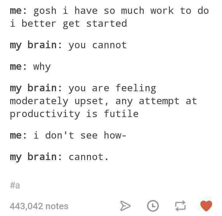 Text - me: gosh i have so much work to do i better get started my brain: you cannot me: why my brain: you are feeling moderately upset, any attempt at productivity is futile me: i don't see how- my brain cannot. #a 443,042 notes