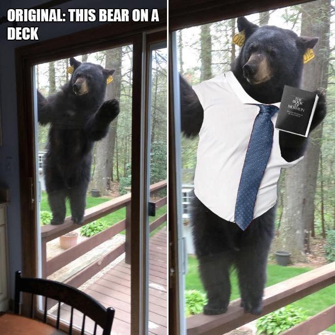 Bear - ORIGINAL: THIS BEAR ON A DECK ГНE MON