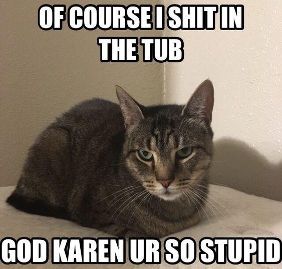 Cat - OF COURSEDSHIT IN THE TUB GOD KAREN UR SO STUPID