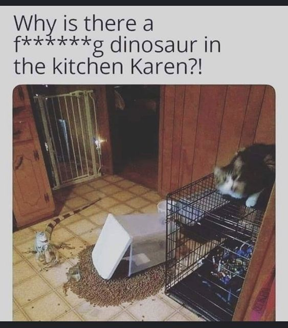 Cage - Why is there a f***g dinosaur in the kitchen Karen?!