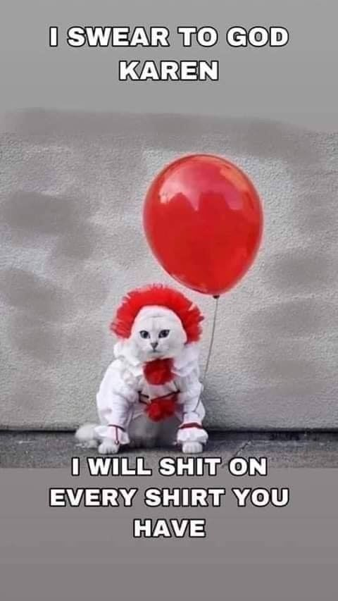 Balloon - O SWEAR TO GOD KAREN I WILL SHIT ON EVERY SHIRT YOU HAVE