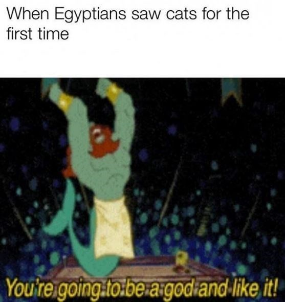 Text - When Egyptians saw cats for the first time You'reigoing tobe a.godiand-like it!