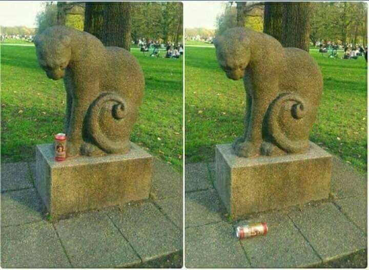 funny cat memes - 9380377600