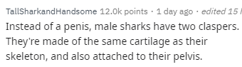 Text - TallSharkandHandsome 12.0k points 1 day ago edited 15 I Instead of a penis, male sharks have two claspers. They're made of the same cartilage as their skeleton, and also attached to their pelvis.